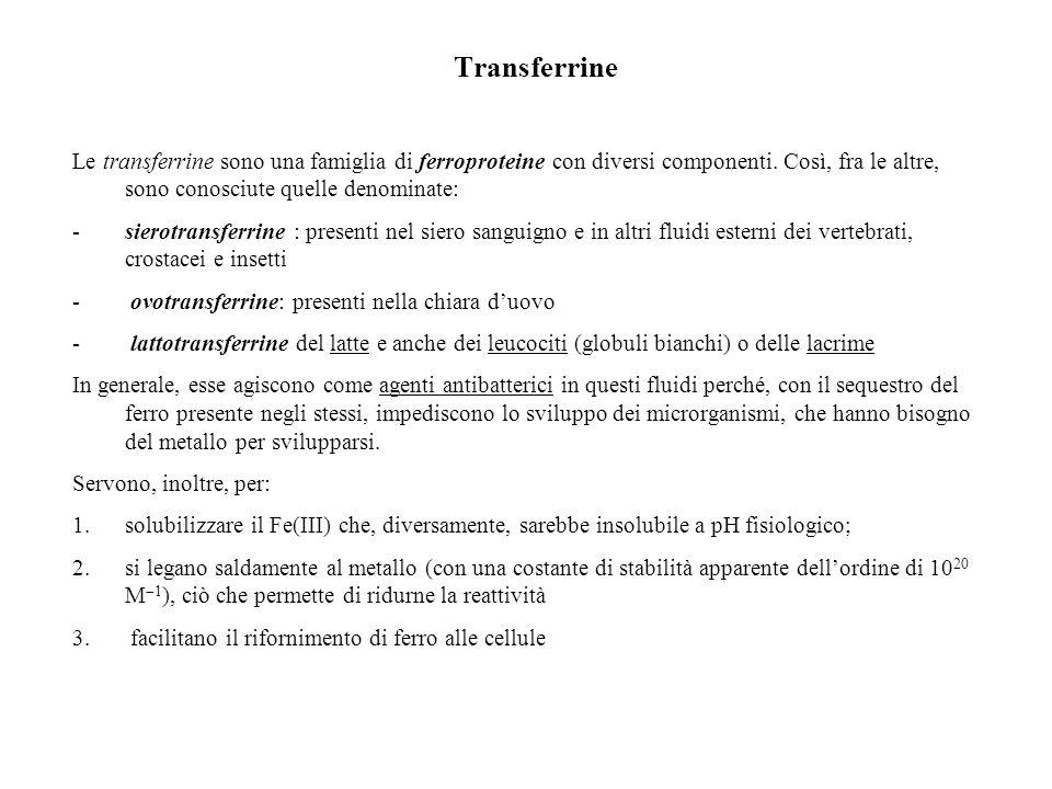 Transferrine Le transferrine sono una famiglia di ferroproteine con diversi componenti. Così, fra le altre, sono conosciute quelle denominate: -sierot