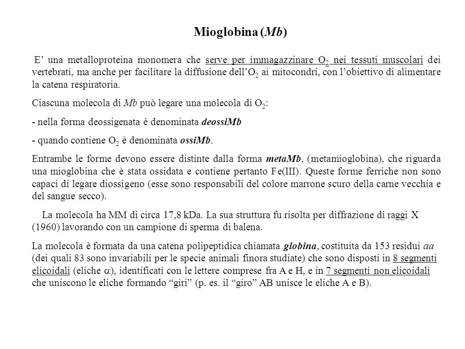 Mioglobina (Mb) E una metalloproteina monomera che serve per immagazzinare O 2 nei tessuti muscolari dei vertebrati, ma anche per facilitare la diffus
