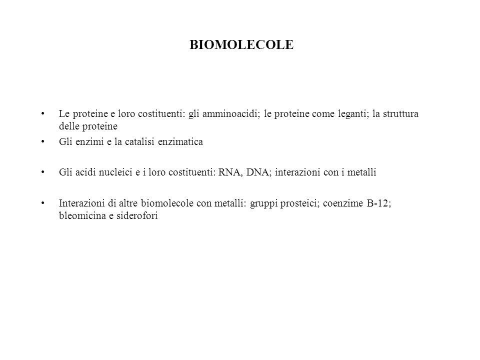 BIOMOLECOLE Le proteine e loro costituenti: gli amminoacidi; le proteine come leganti; la struttura delle proteine Gli enzimi e la catalisi enzimatica