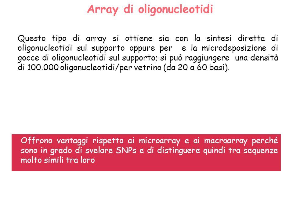 DNA Chips o microarrays di oligonucleotidi: metodo sviluppato dalla Affymetrix Inc.