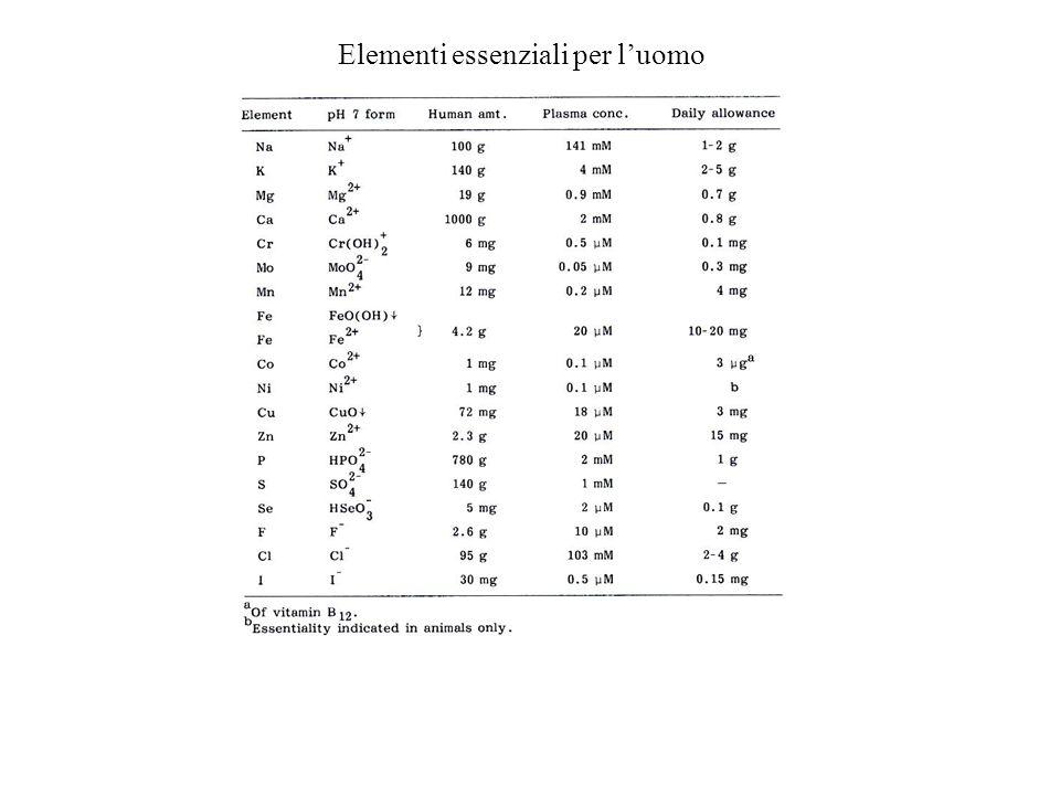 Elementi essenziali per luomo