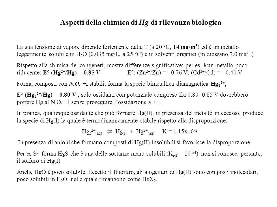 Aspetti della chimica di Hg di rilevanza biologica La sua tensione di vapore dipende fortemente dalla T (a 20 °C, 14 mg/m 3 ) ed è un metallo leggerme