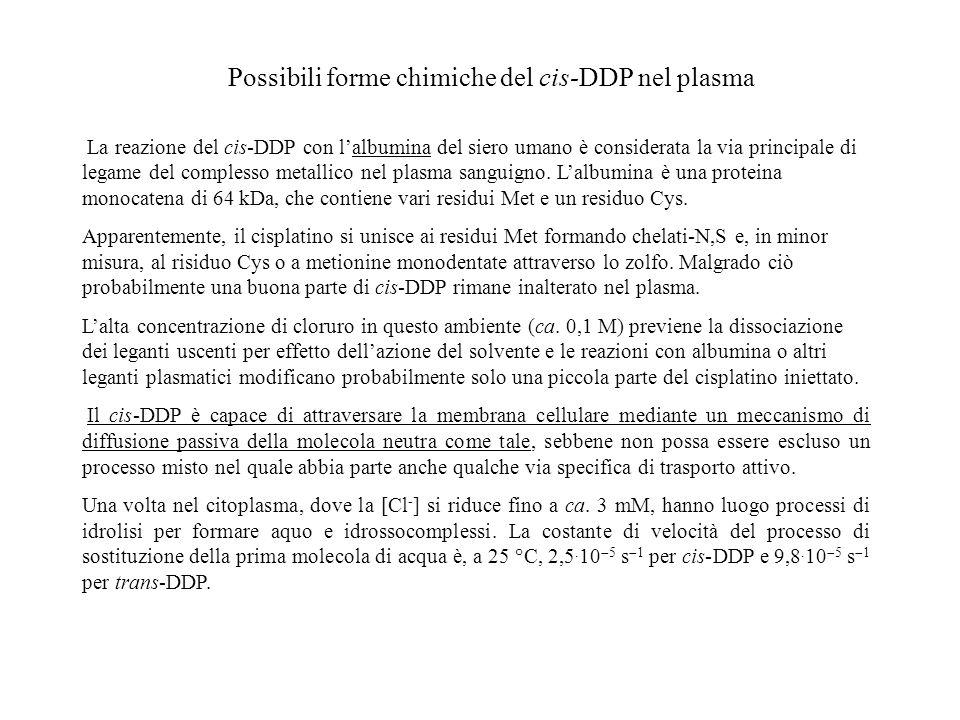 Possibili forme chimiche del cis-DDP nel plasma La reazione del cis-DDP con lalbumina del siero umano è considerata la via principale di legame del co