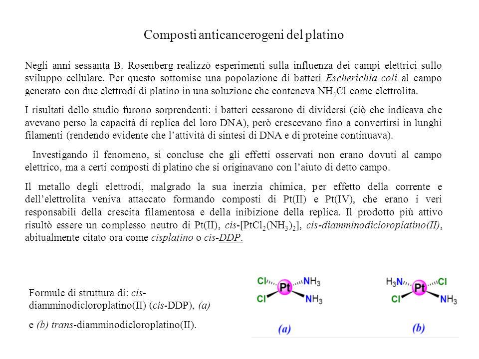 Composti anticancerogeni del platino Negli anni sessanta B. Rosenberg realizzò esperimenti sulla influenza dei campi elettrici sullo sviluppo cellular
