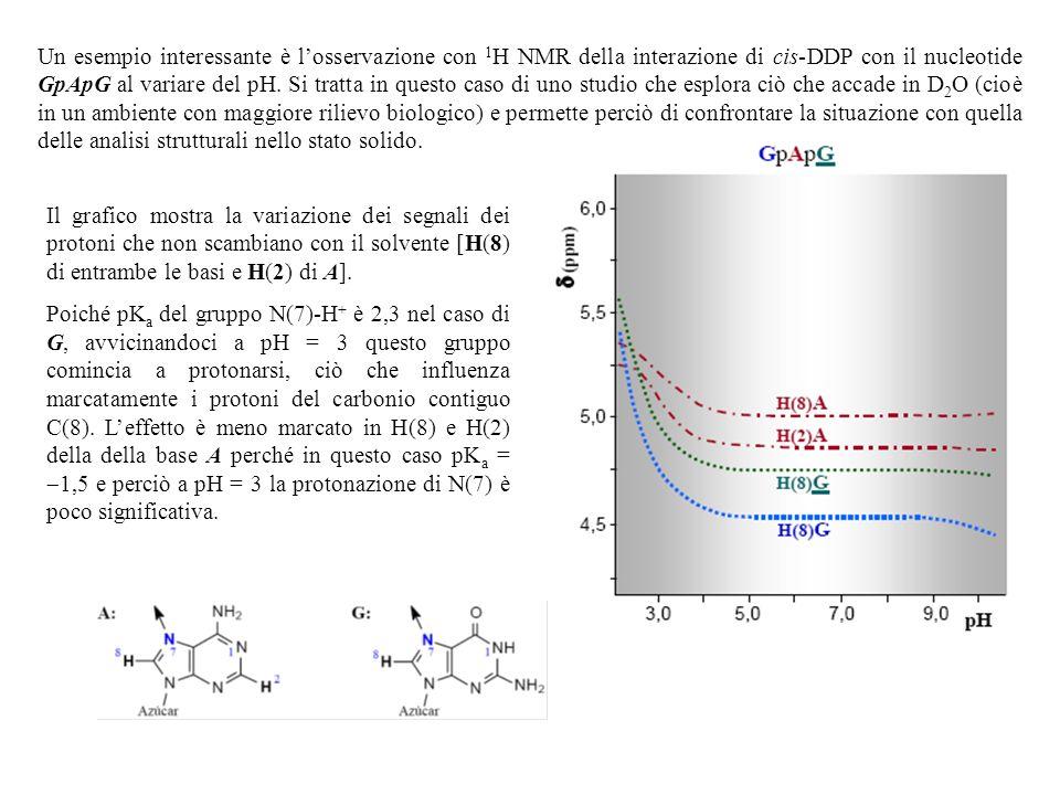 Un esempio interessante è losservazione con 1 H NMR della interazione di cis-DDP con il nucleotide GpApG al variare del pH. Si tratta in questo caso d