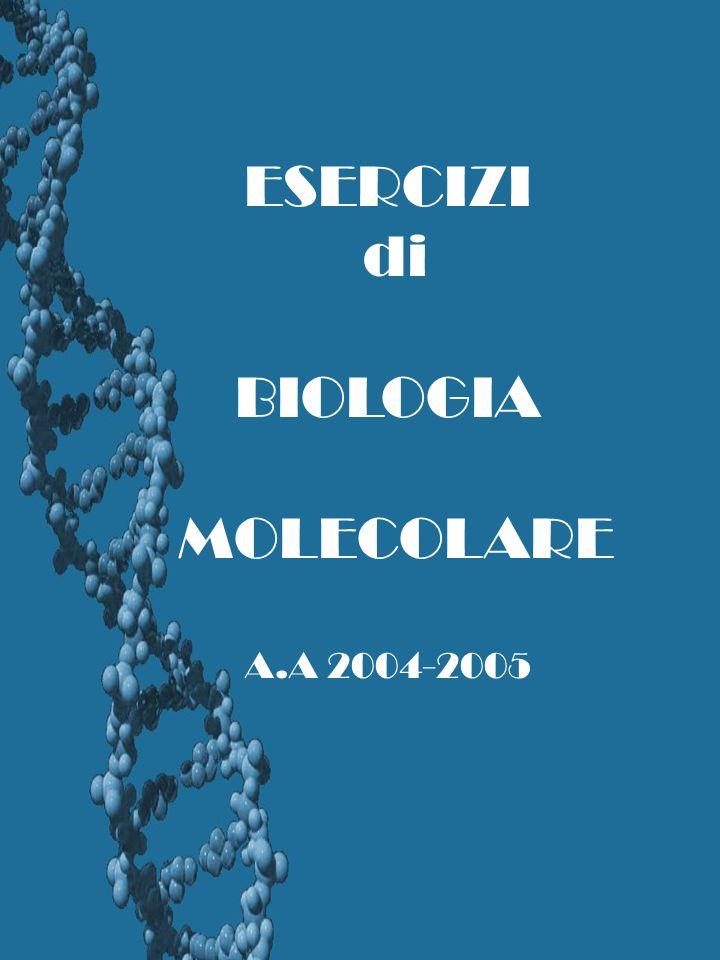 ESERCIZI di BIOLOGIA MOLECOLARE A.A 2004-2005