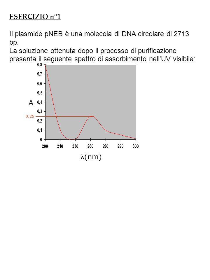 1)Qual è la concentrazione MOLARE della soluzione?(d=cammino ottico=0,3 cm) [C=30,7 X 10 –9 M=30,7 nM] 2) Qual è la concentrazione in ng\ l.