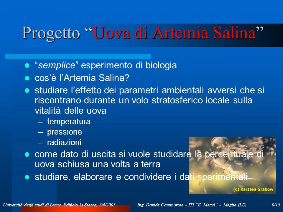 9/15Ing. Davide Cammarota - ITI E. Mattei - Maglie (LE)Università degli studi di Lecce, Edificio la Stecca, 7/4/2005 Progetto Uova di Artemia Salina s