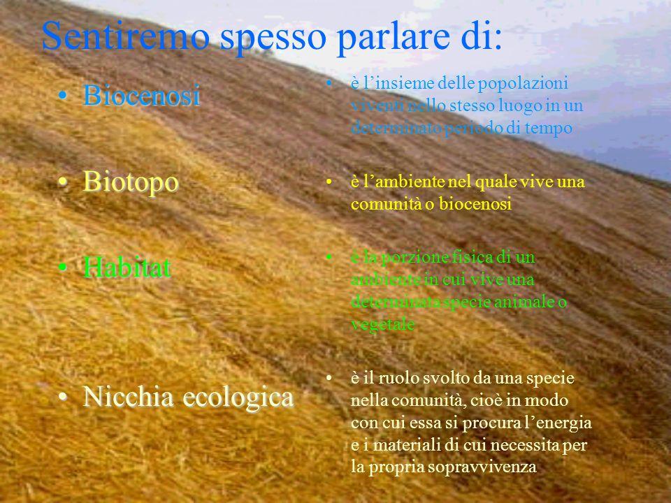 Sentiremo spesso parlare di: BiocenosiBiocenosi BiotopoBiotopo HabitatHabitat Nicchia ecologicaNicchia ecologica è linsieme delle popolazioni viventi