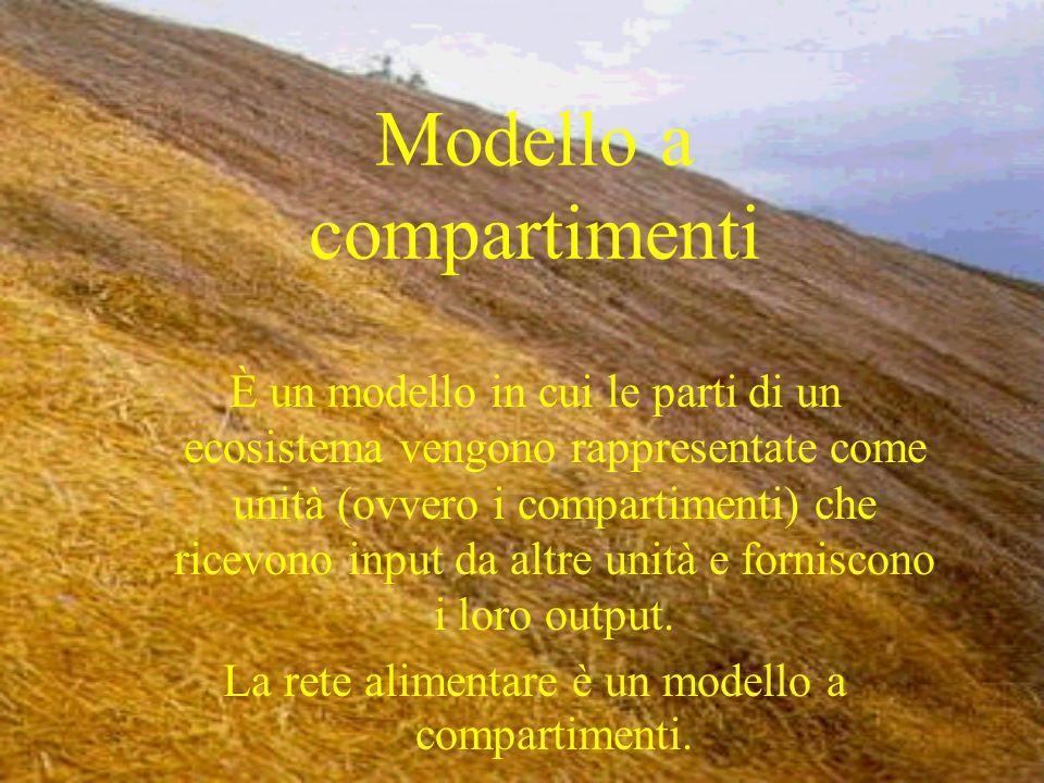 Modello a compartimenti È un modello in cui le parti di un ecosistema vengono rappresentate come unità (ovvero i compartimenti) che ricevono input da