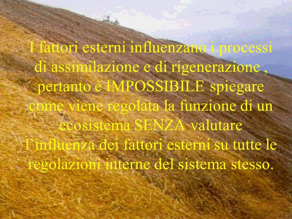 Fattori che regolano gli ecosistemi Secondo P.Vitousek i fattori che detrminano la REGOLAZIONE degli ECOSISTEMI sono i processi responsabili della RIGENERAZIONE degli elementi il cui riciclo presenta la più stretta correlazione con la produzione primaria, ed inoltre, Vitousek, ha poi dimostrato che la produzione NON è proporzionale al riciclo dei nutrienti.