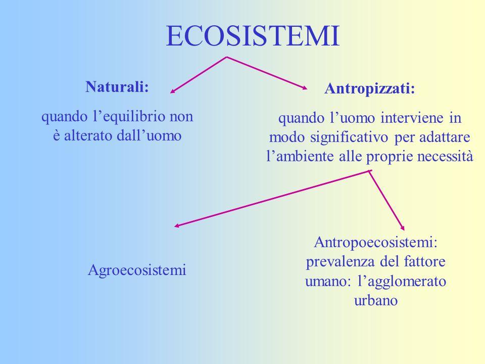 ECOSISTEMI Naturali: quando lequilibrio non è alterato dalluomo Antropizzati: quando luomo interviene in modo significativo per adattare lambiente all