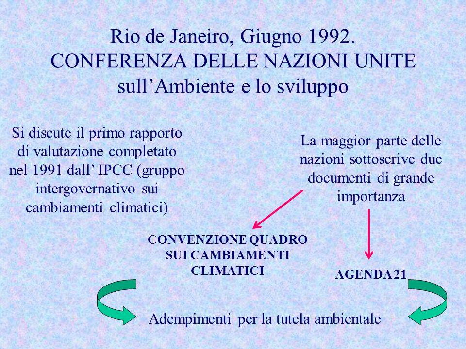 Rio de Janeiro, Giugno 1992. CONFERENZA DELLE NAZIONI UNITE sullAmbiente e lo sviluppo Si discute il primo rapporto di valutazione completato nel 1991