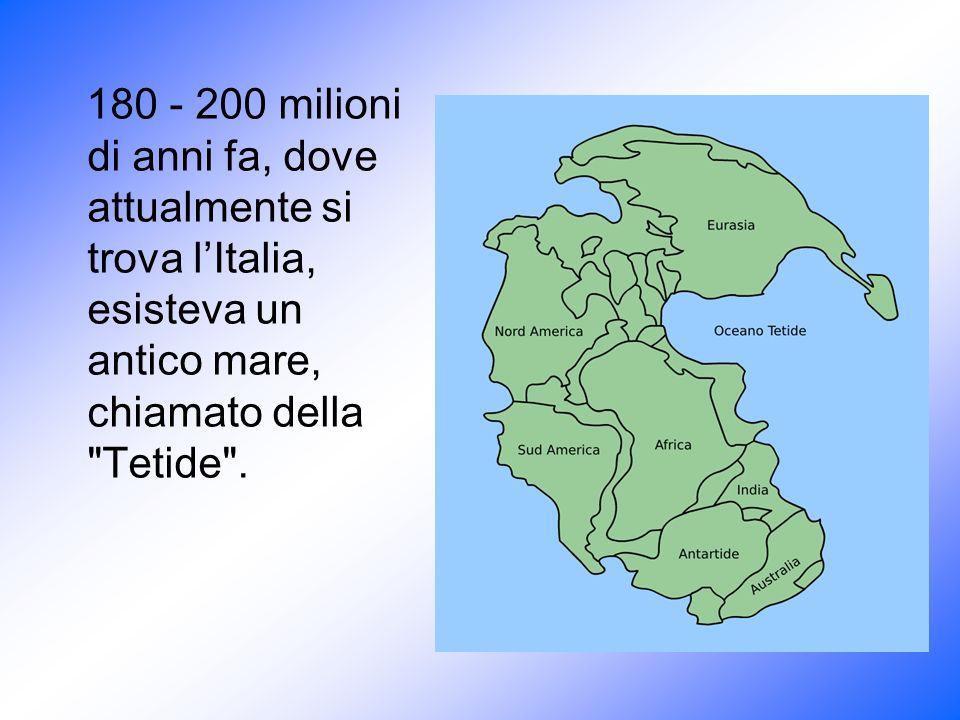 180 - 200 milioni di anni fa, dove attualmente si trova lItalia, esisteva un antico mare, chiamato della