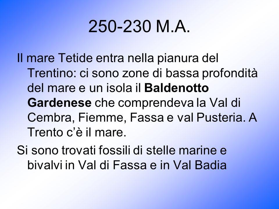250-230 M.A. Il mare Tetide entra nella pianura del Trentino: ci sono zone di bassa profondità del mare e un isola il Baldenotto Gardenese che compren