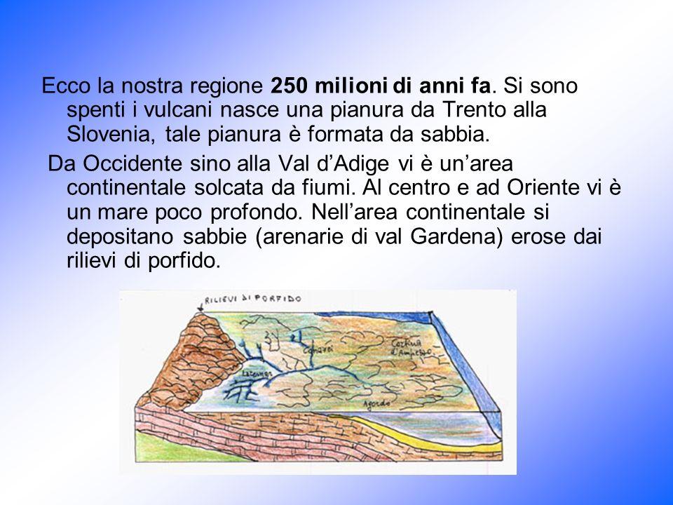 Ecco la nostra regione 250 milioni di anni fa. Si sono spenti i vulcani nasce una pianura da Trento alla Slovenia, tale pianura è formata da sabbia. D