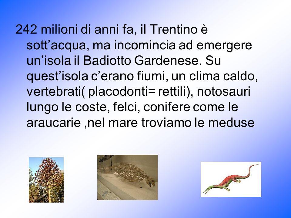 242 milioni di anni fa, il Trentino è sottacqua, ma incomincia ad emergere unisola il Badiotto Gardenese. Su questisola cerano fiumi, un clima caldo,