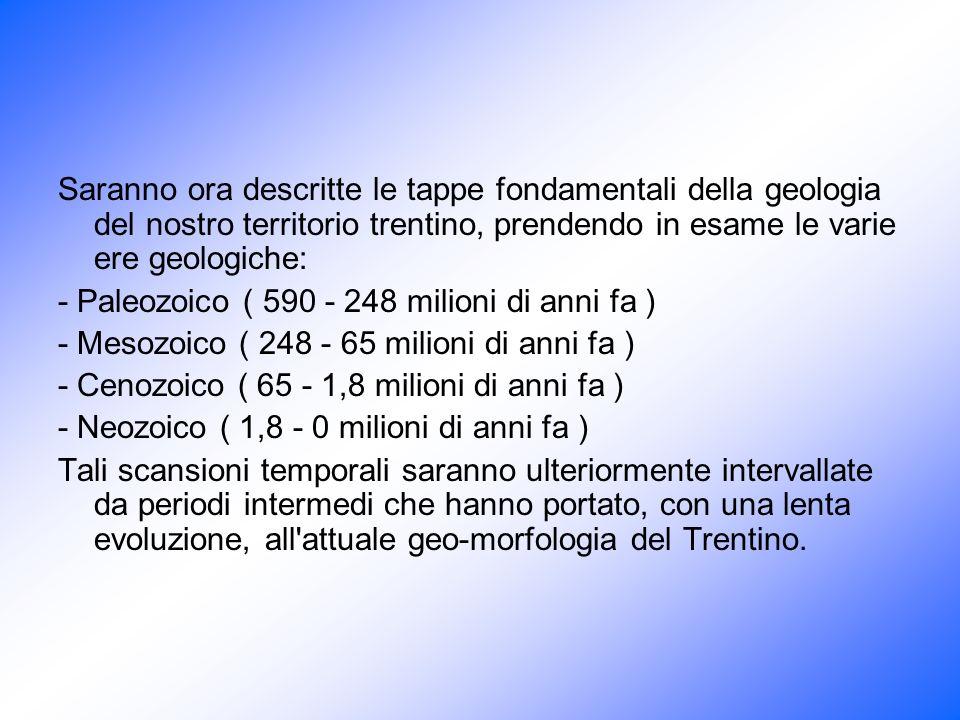 Era PeriodoEventi della storiaAltri eventi Quaternario o neozoicaOlocene (0,01)*Flora e fauna moderne Pleistocene (2)Sviluppo e diffusione delluomoEtà glaciale CenozoicoNeogene (25)Evoluzione degli ominidi e sviluppo dei mammiferi pascolanti La penisola italiana è in gran parte emersa, sollevamento delle placche Paleogene (65)Primi elefanti, foreste moderneSollevamento Himalaia, apertura dellAtlantico settentrionale MesozoicoCretaceo (135)Evoluzione piante e fiori, estinzioni dei dinosauri (impatto meteorite) Cominciano a sollevarsi le Alpi Giurassico (190)Culmine evoluzione rettili e primi uccelliLa Pangea si frattura Triassico (225)Sviluppo di felci e conifere, primi piccoli mammiferi, dinosauri PaleozoicoPermiano (270)Prime conifere, sviluppo dei rettili,La parte meridionale della Pangea è presso il Polo Sud ricoperta dai ghiacci Carbonifero (350)Paludi e grandi foreste di piante estinte e sviluppo di insetti Rocce più antiche del Trentino Devoniano (400)Diffusione delle piante terrestri, sviluppo di pesci e primi anfibi Siluriano (440)Primi vegetali terrestri, primi animali che riescono a respirare laria (scorpioni) Ginkgo biloba Ordoviciano (500)Alghe calcaree e primi vertebrati Cambriano (600)Si sviluppano gli invertebrati marini con guscio e comparsa dei primi fossili trilobiti Precambriano o archeozoica Proterozoico (2500)Diffusione di invertebrati senza guscio, nascita di meduse e vermi segmentati Archeano (3750)Prime tracce di alghe azzurre e batteri Prime forme di vita