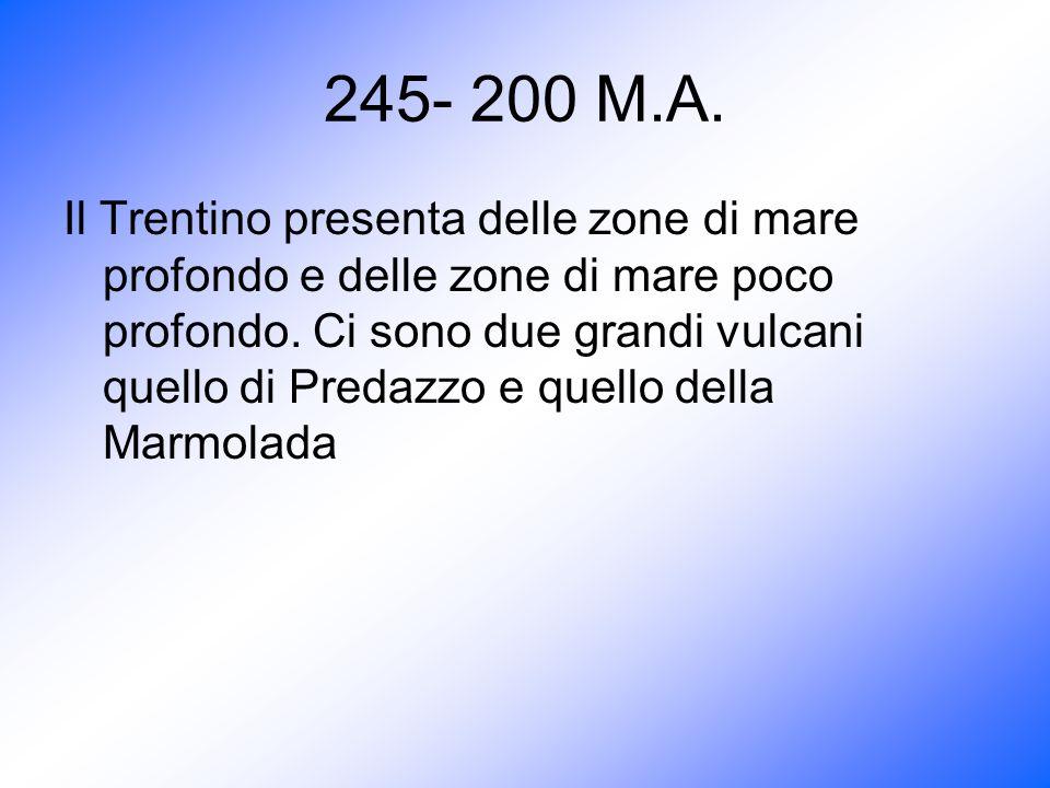 245- 200 M.A. Il Trentino presenta delle zone di mare profondo e delle zone di mare poco profondo. Ci sono due grandi vulcani quello di Predazzo e que