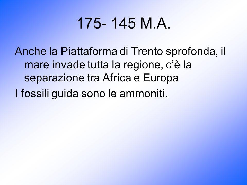175- 145 M.A. Anche la Piattaforma di Trento sprofonda, il mare invade tutta la regione, cè la separazione tra Africa e Europa I fossili guida sono le