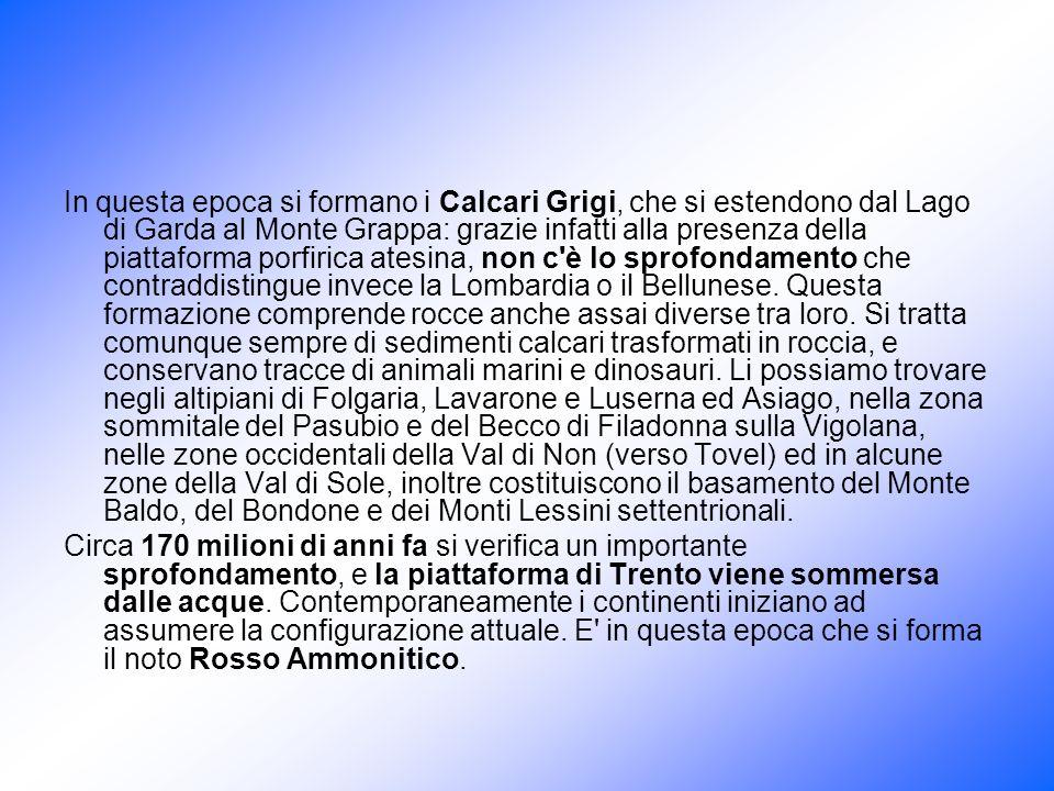 In questa epoca si formano i Calcari Grigi, che si estendono dal Lago di Garda al Monte Grappa: grazie infatti alla presenza della piattaforma porfiri