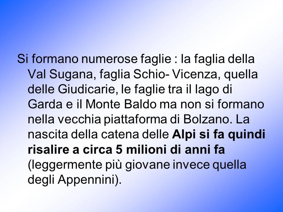 Si formano numerose faglie : la faglia della Val Sugana, faglia Schio- Vicenza, quella delle Giudicarie, le faglie tra il lago di Garda e il Monte Bal