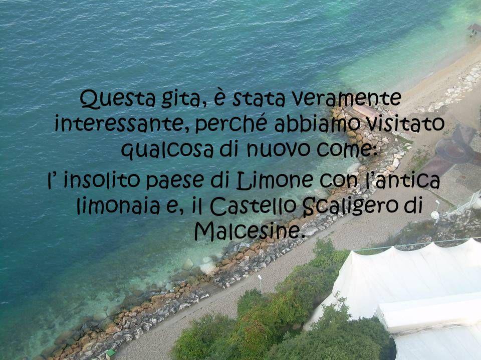 Questa gita, è stata veramente interessante, perché abbiamo visitato qualcosa di nuovo come: l insolito paese di Limone con lantica limonaia e, il Castello Scaligero di Malcesine.