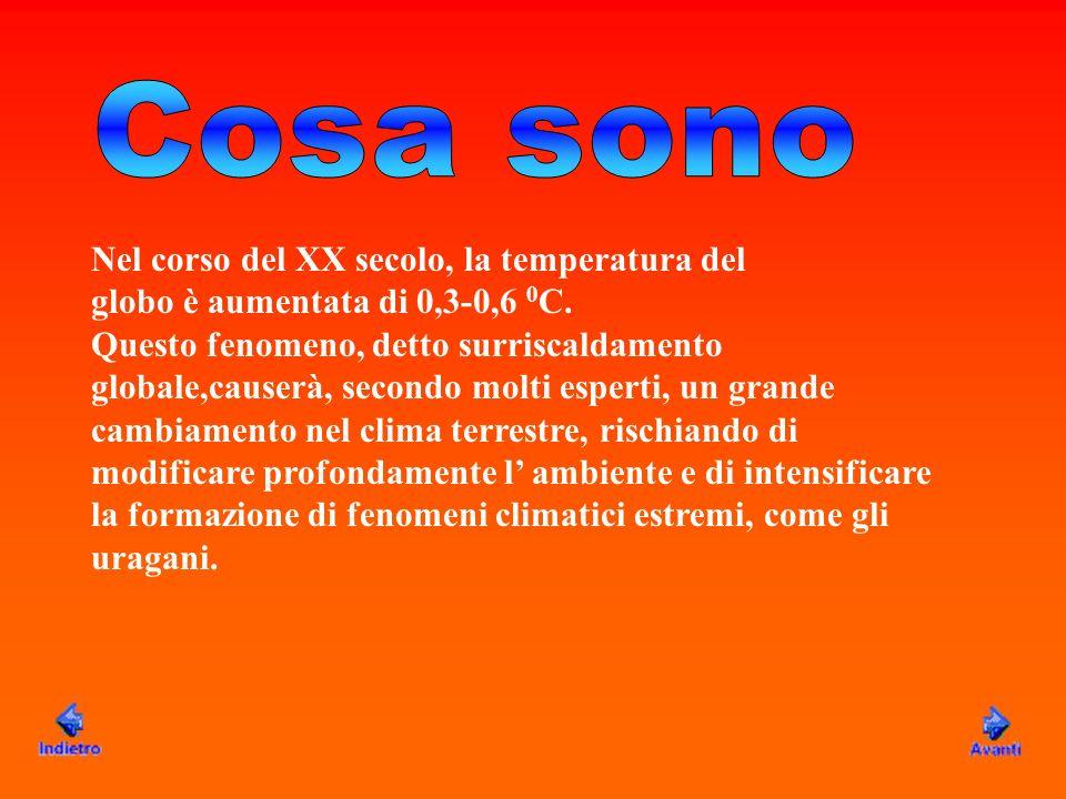 Nel corso del XX secolo, la temperatura del globo è aumentata di 0,3-0,6 0 C. Questo fenomeno, detto surriscaldamento globale,causerà, secondo molti e