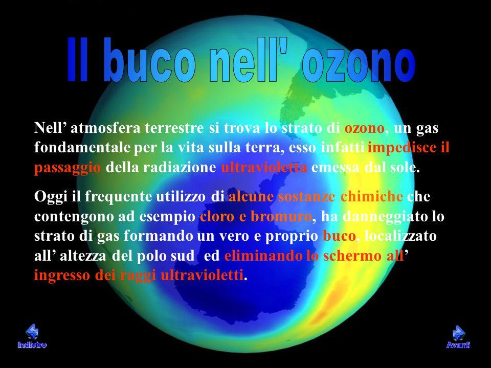 Nell atmosfera terrestre si trova lo strato di ozono, un gas fondamentale per la vita sulla terra, esso infatti impedisce il passaggio della radiazion