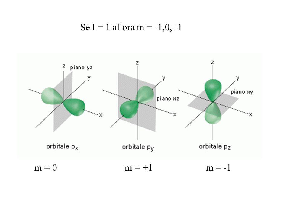 Se l = 1 allora m = -1,0,+1 m = 0 m = +1 m = -1