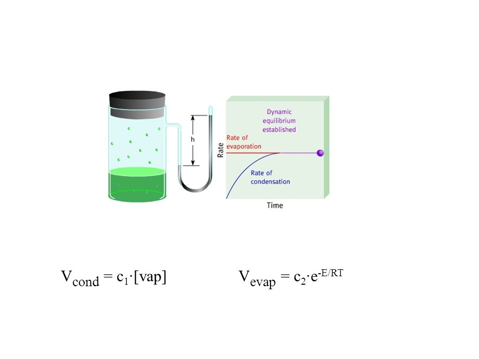 V cond = c 1 ·[vap] V evap = c 2 ·e -E/RT