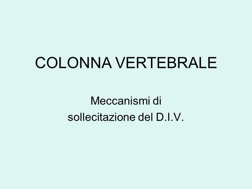COLONNA VERTEBRALE Meccanismi di sollecitazione del D.I.V.