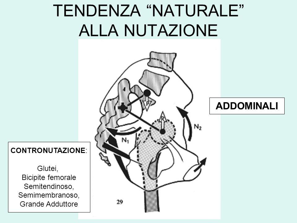 TENDENZA NATURALE ALLA NUTAZIONE CONTRONUTAZIONE: Glutei, Bicipite femorale Semitendinoso, Semimembranoso, Grande Adduttore ADDOMINALI
