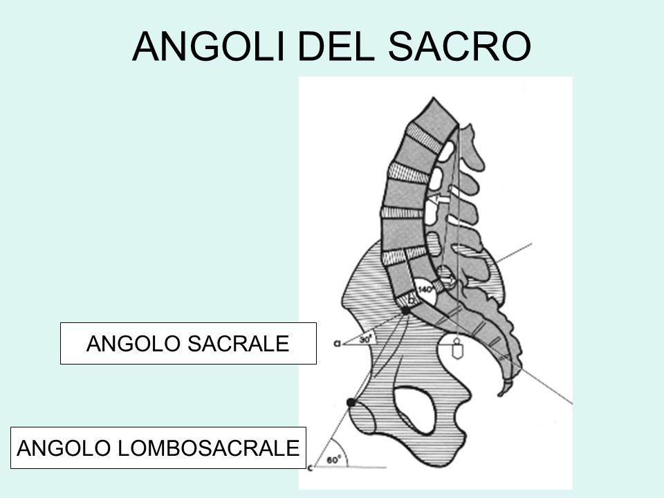 ANGOLI DEL SACRO ANGOLO SACRALE ANGOLO LOMBOSACRALE