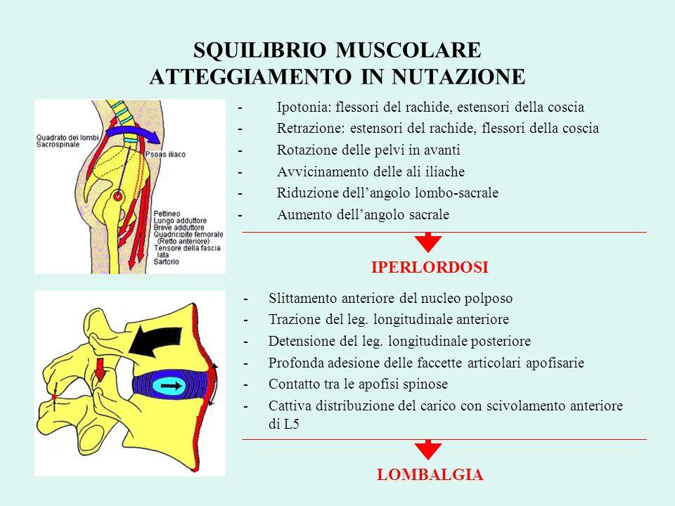 -Ipotonia: flessori del rachide, estensori della coscia -Retrazione: estensori del rachide, flessori della coscia -Rotazione delle pelvi in avanti -Av