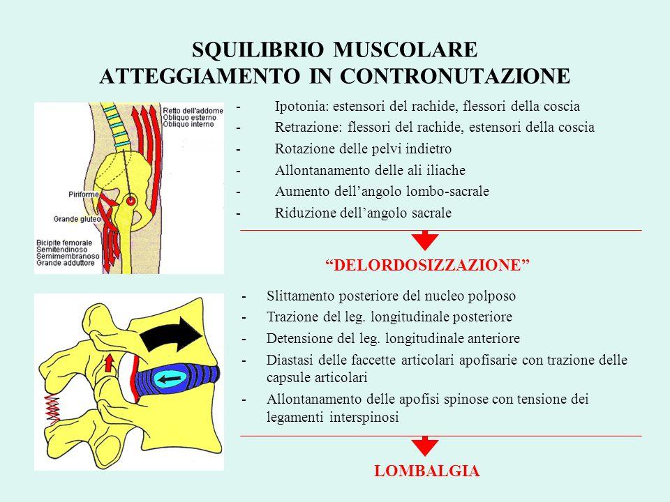 -Ipotonia: estensori del rachide, flessori della coscia -Retrazione: flessori del rachide, estensori della coscia -Rotazione delle pelvi indietro -All