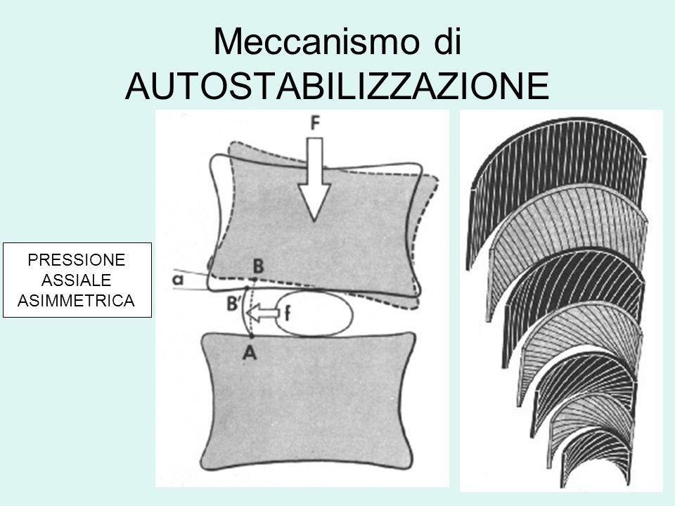Meccanismo di AUTOSTABILIZZAZIONE PRESSIONE ASSIALE ASIMMETRICA