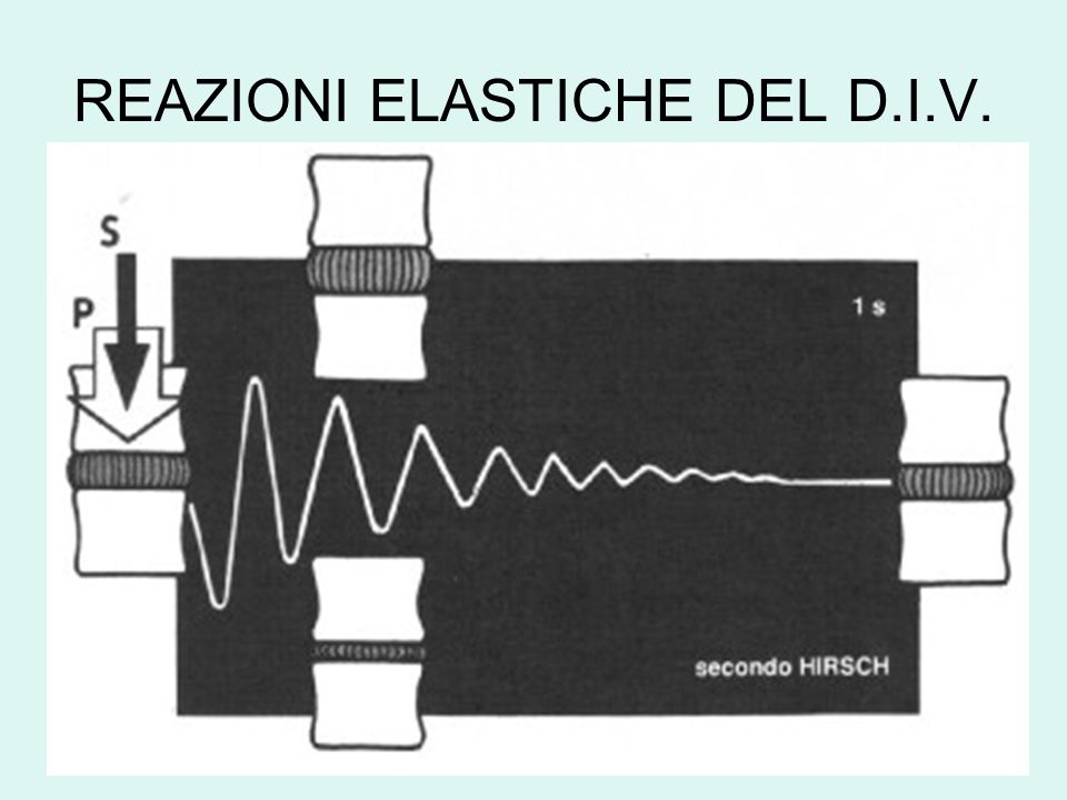 REAZIONI ELASTICHE DEL D.I.V.