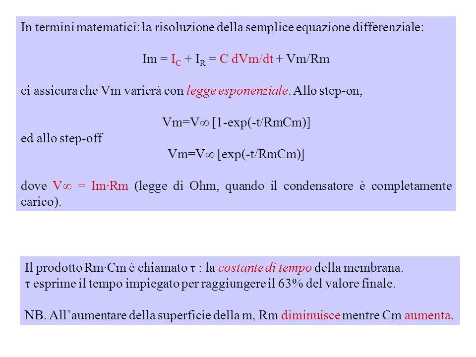 Im si divide in due componenti: una corrente capacitiva (I C ) che serve a caricare Cm, ed una corrente resistiva o ionica (I R ) che fluisce attraver