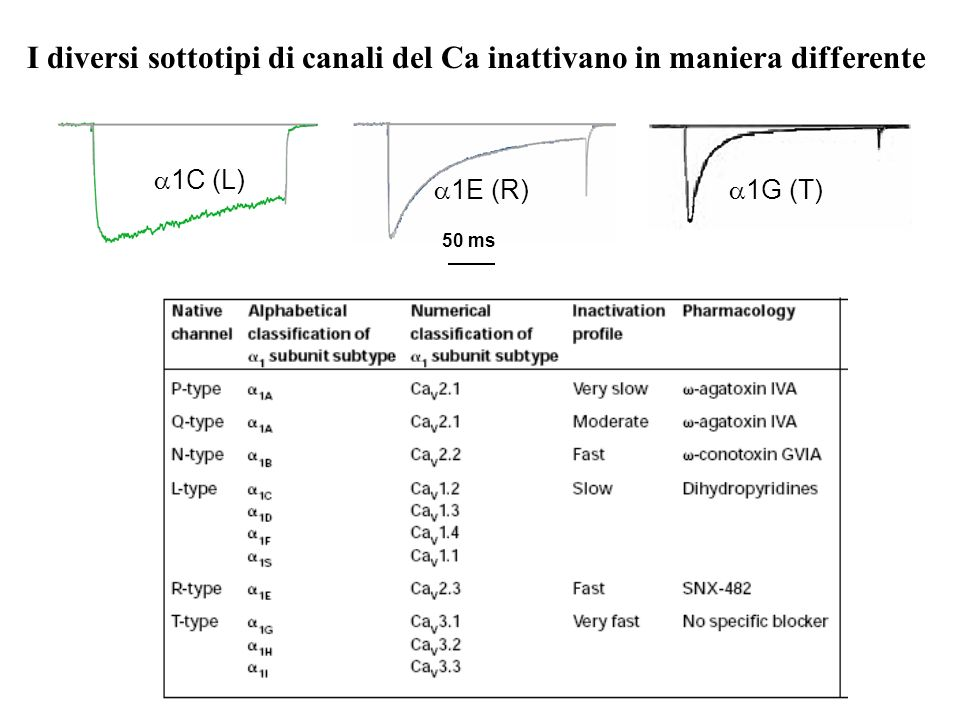 Correnti T neuronali e spikes al Ca 2+ V hold -90 mV