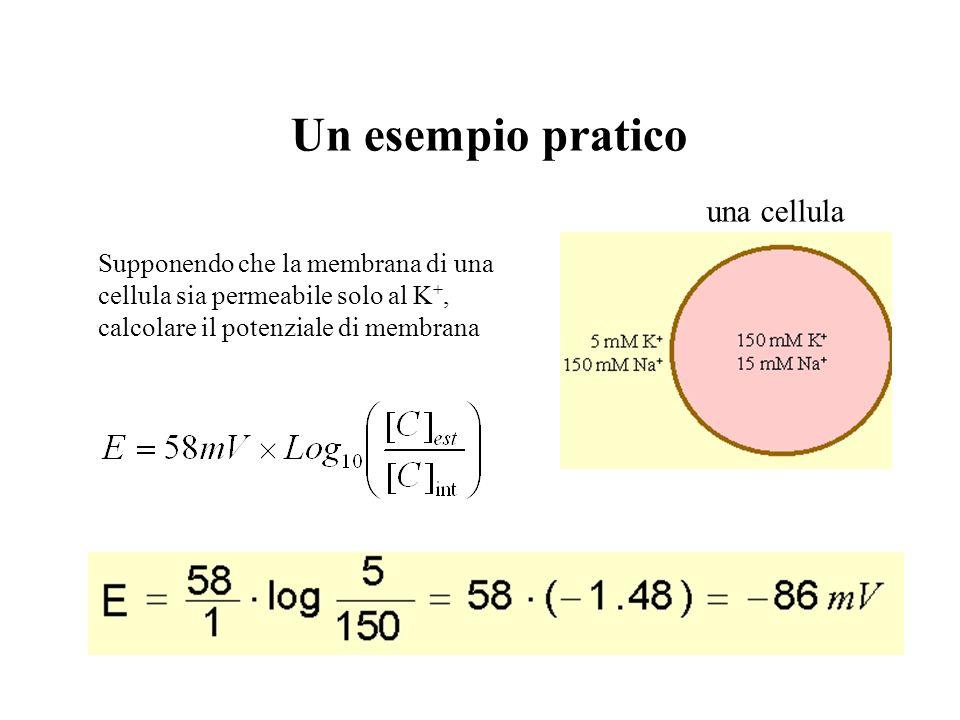 Distribuzione di Boltzmann Notare che: Ovvero, essendo: q e =carica dellelettrone=F/N R=cost. dei gas=k B ·N dove: k B (cost. di Boltzmann) N (numero