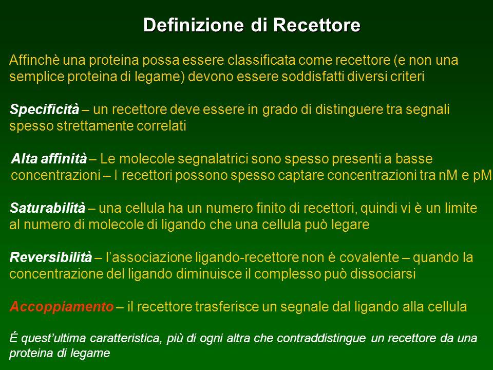 Definizione di Recettore Affinchè una proteina possa essere classificata come recettore (e non una semplice proteina di legame) devono essere soddisfa