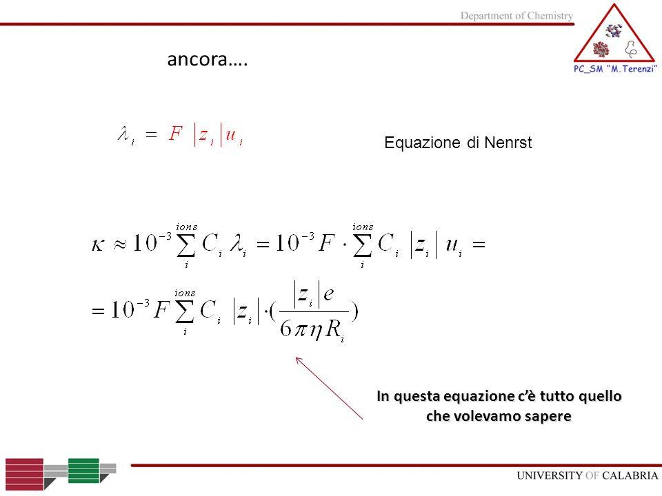 ancora…. Equazione di Nenrst In questa equazione cè tutto quello che volevamo sapere
