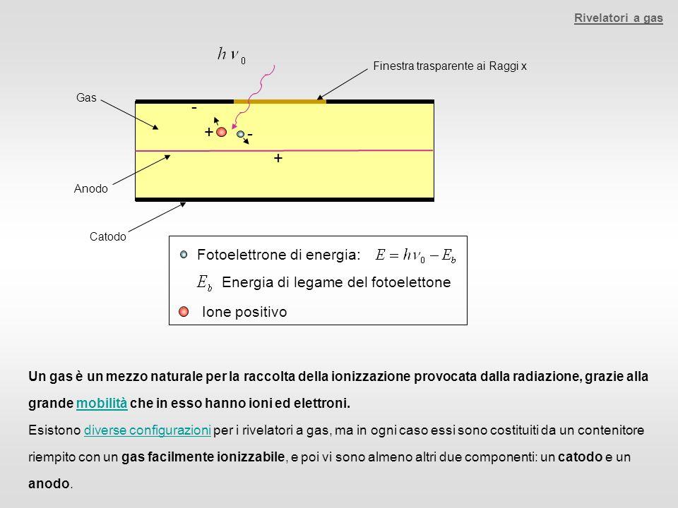 Rivelatori a gas Gas Anodo Catodo Finestra trasparente ai Raggi x - + + - Fotoelettrone di energia: Energia di legame del fotoelettone Ione positivo U
