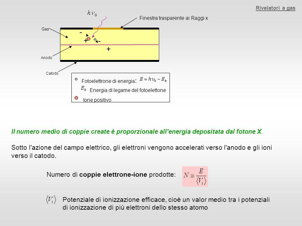Gas Anodo Catodo Finestra trasparente ai Raggi x - + + - Fotoelettrone di energia : Energia di legame del fotoelettone Ione positivo Il numero medio d