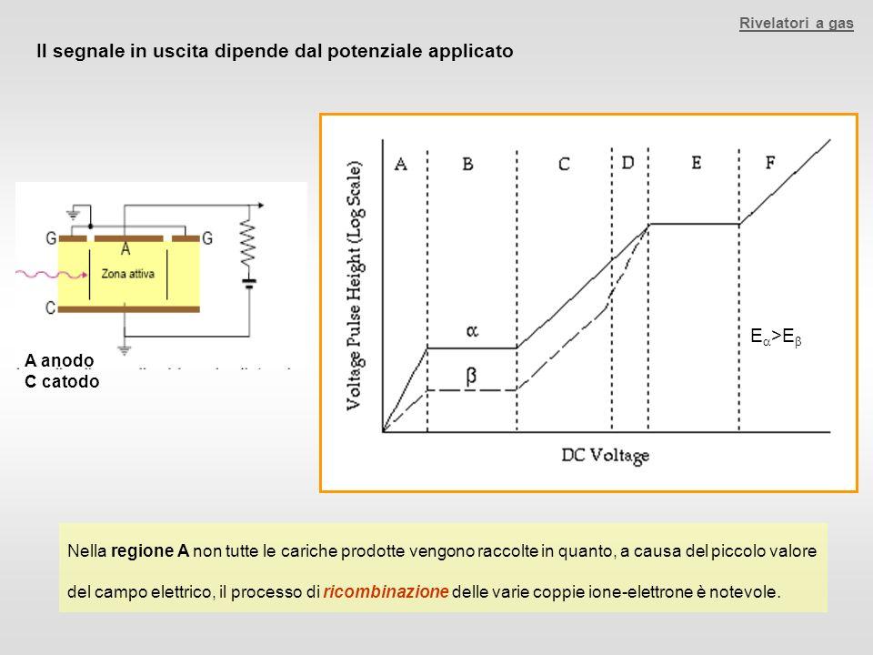 Il segnale in uscita dipende dal potenziale applicato Nella regione A non tutte le cariche prodotte vengono raccolte in quanto, a causa del piccolo va