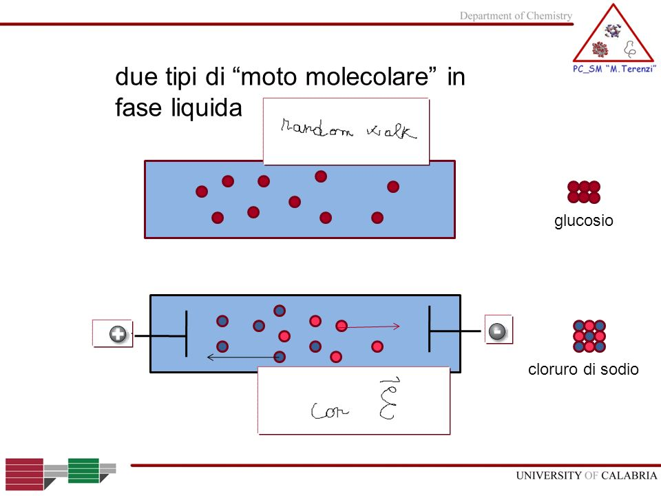 due tipi di moto molecolare in fase liquida glucosio cloruro di sodio