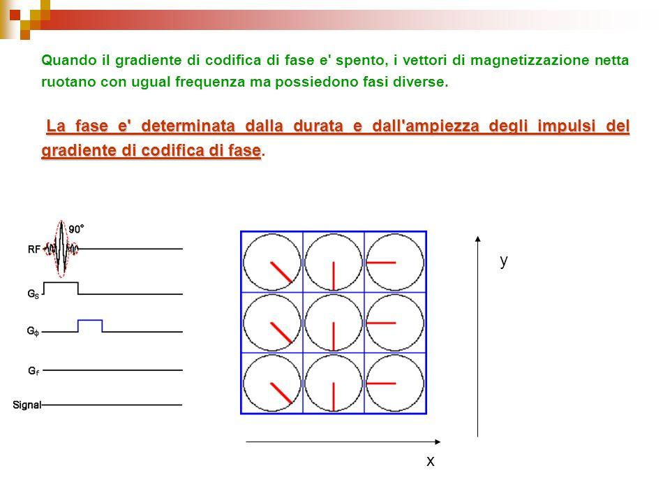 Quando il gradiente di codifica di fase e' spento, i vettori di magnetizzazione netta ruotano con ugual frequenza ma possiedono fasi diverse. La fase