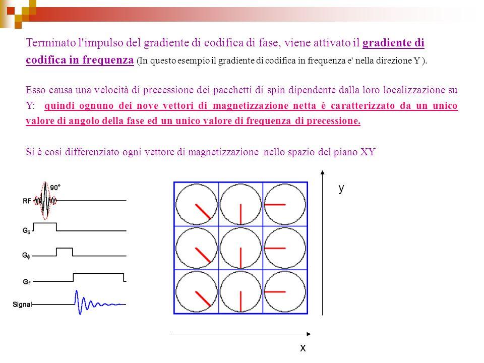 Terminato l'impulso del gradiente di codifica di fase, viene attivato il gradiente di codifica in frequenza (In questo esempio il gradiente di codific