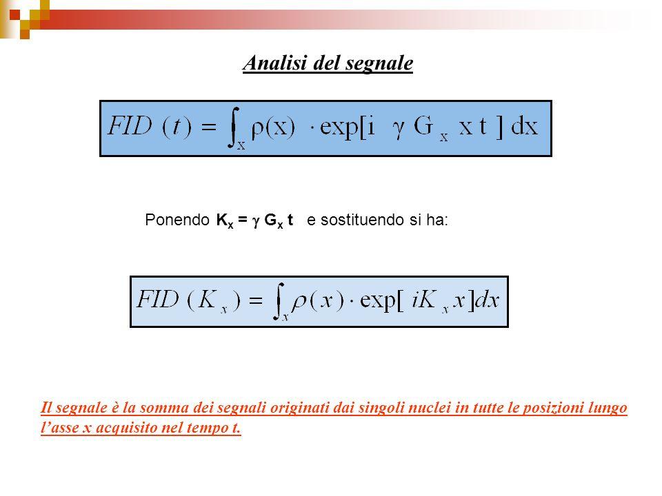 Analisi del segnale Ponendo K x = G x t e sostituendo si ha: Il segnale è la somma dei segnali originati dai singoli nuclei in tutte le posizioni lung